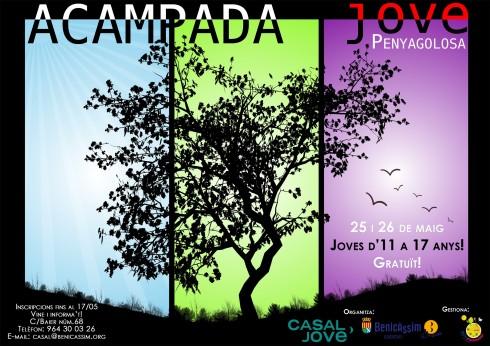 A3_acampada_jove definitiu