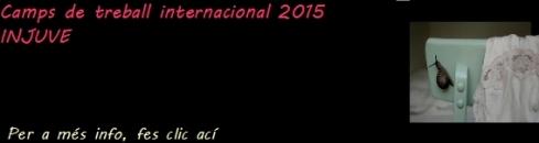 camps de treball internacional 2015