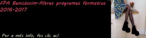 fp-altres programes formatius
