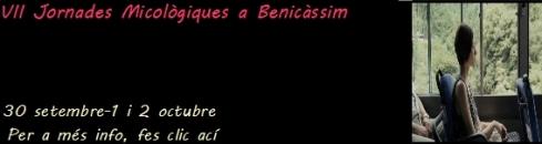 centre-excursionista-benicassim